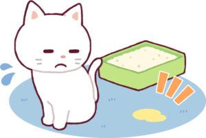 下痢軟便が悩みの猫